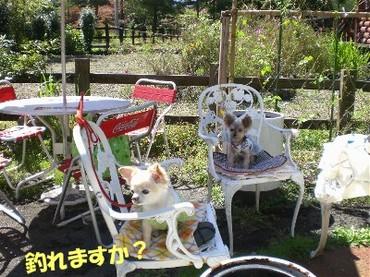 0809karuizawab2