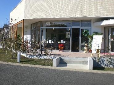 081122dogcafe1