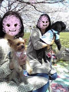 090409hakusan3_2