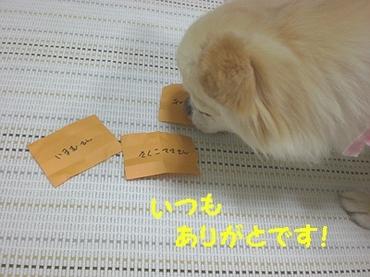 091011kujibiki5