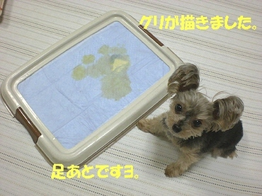 100213gahaku1