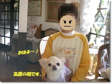 2010karu7_2