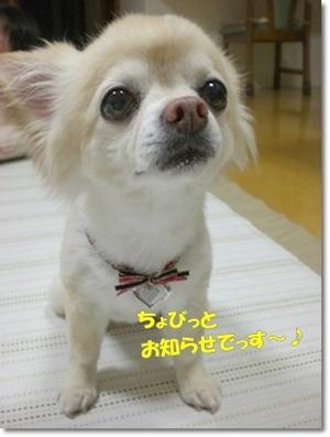 0216kina_2