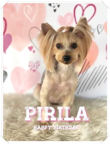 Piri1