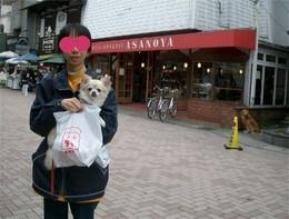 Asanoya
