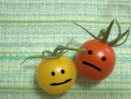 Tomato0816